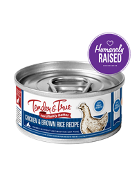 Tender & True Chicken & Brown Rice Recipe for Cats, 5.5 oz